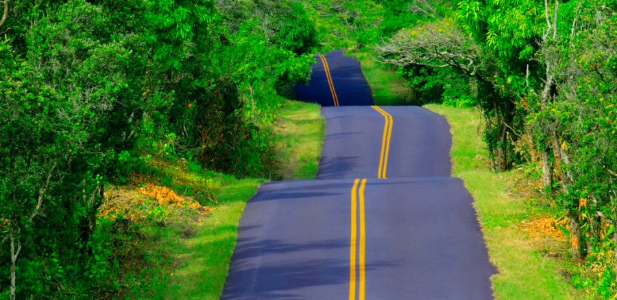 23 Mar 2005, Hawaii, Hawaii, USA --- Hilly Road --- Image by © Royalty-Free/Corbis